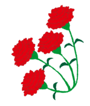 carnation4.png