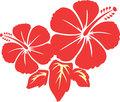 flower5366.jpg